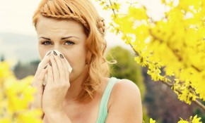 how to treat hayfever